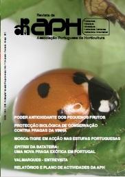 Capa revista 104