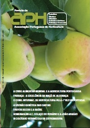 Capa revista 93
