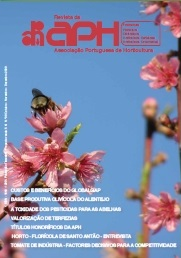 Capa revista 99