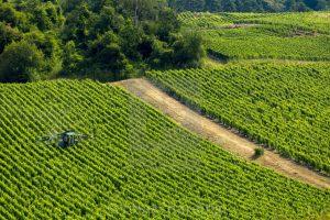 A Qualidade da Pulverização na Proteção da Vinha