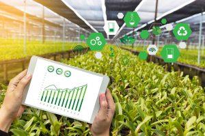 Na atualidade assiste-se a um processo de digitalização da agricultura