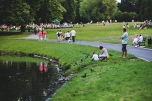 Cidades do século XXI mais verdes e sustentáveis: o papel da horticultura ornamental