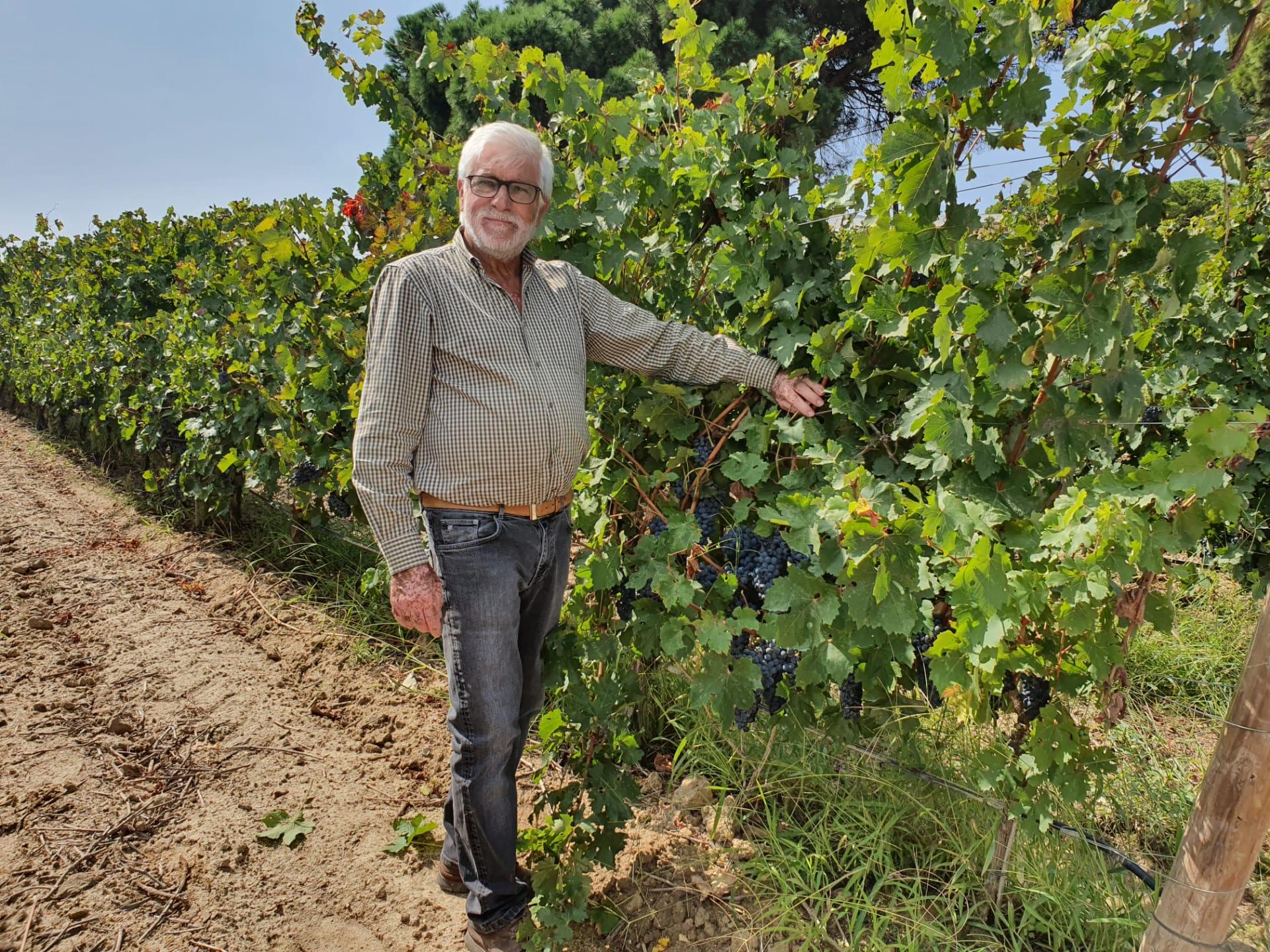 Bacalhôa Vinhos confia na gama de fertilizantes líquidos Tecniferti