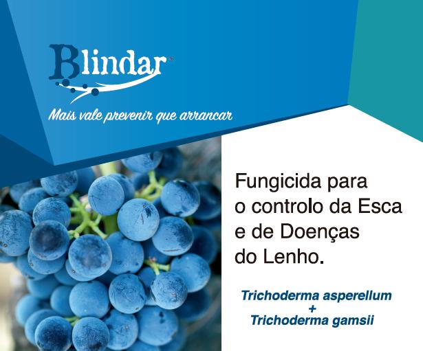 Blindar – Fungicida para controlo da Esca e Doenças do Lenho da Videira